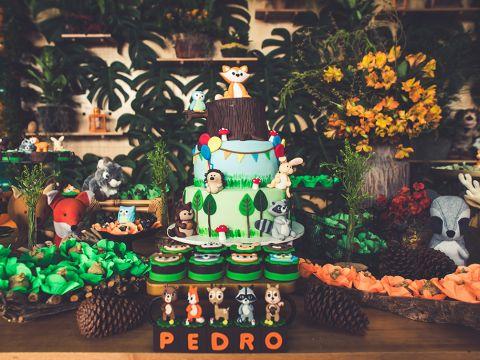1 ano do Pedro!